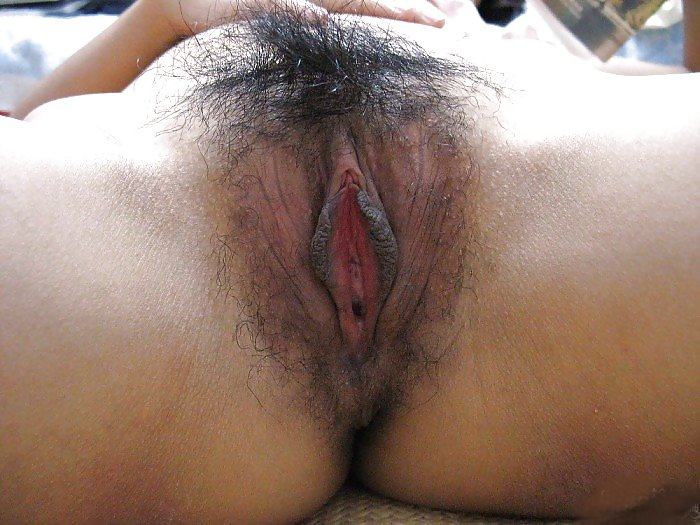 dark-asian-hairy-pussy-picture