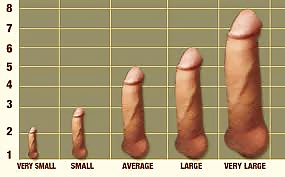 Fat and sinking size of penis