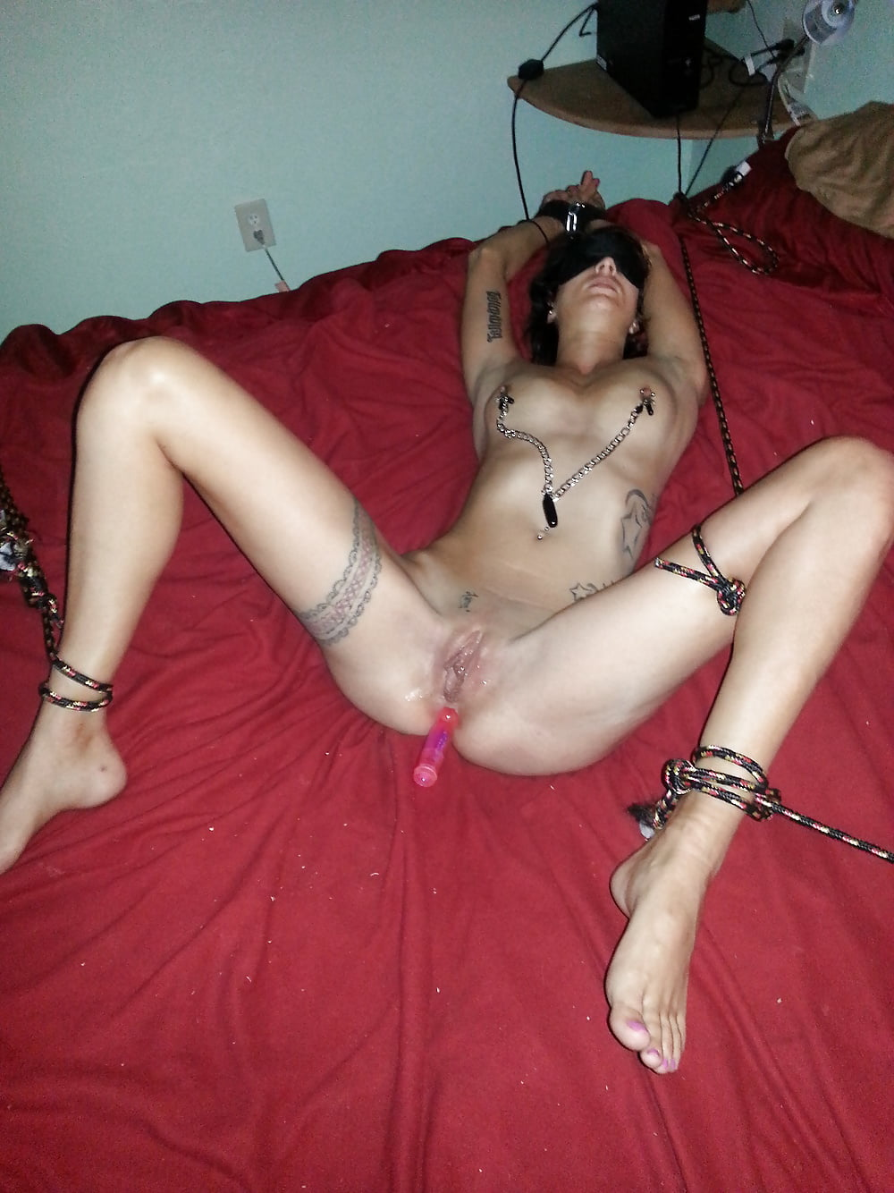Amateur bondage vids bunnies naked