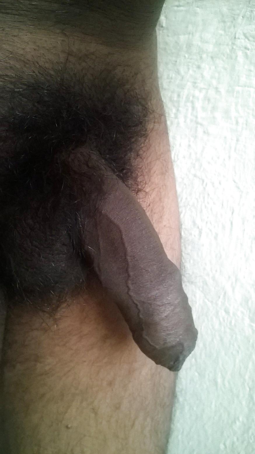 Sex penis vagina