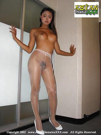 on shemales photos Pantyhose free