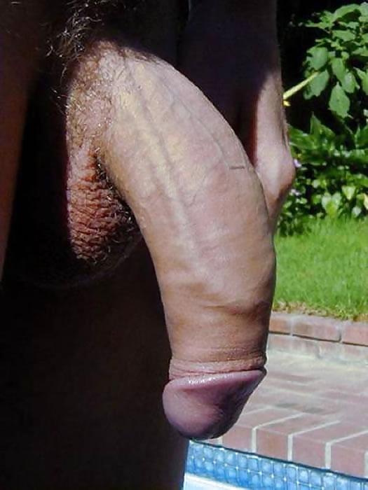 Big shemal flaccid cock