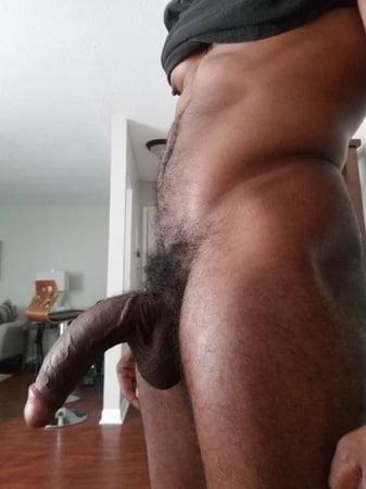 Black cock penis Big Black