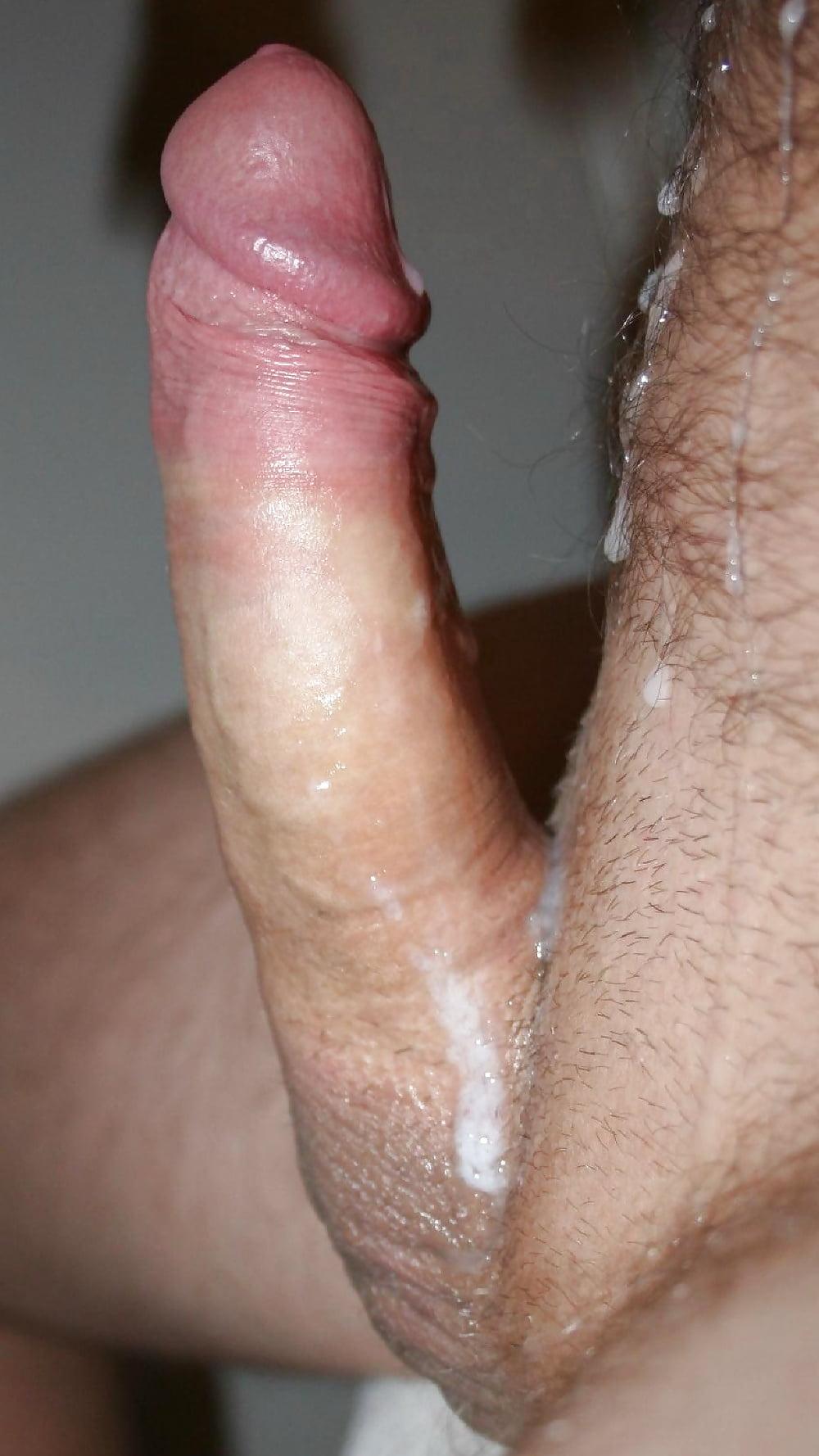 время член фото больших членов с спермами фото большом мягком
