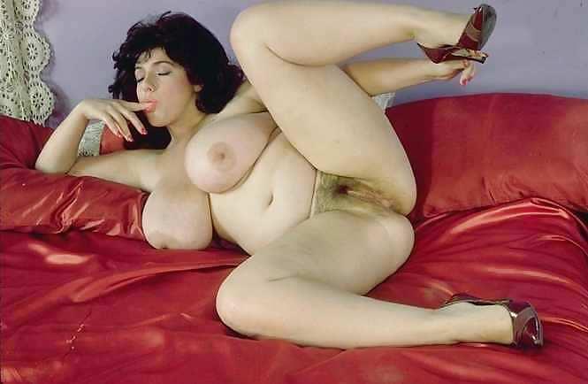 Candye Kane Pornstar Images And Adult Dvds