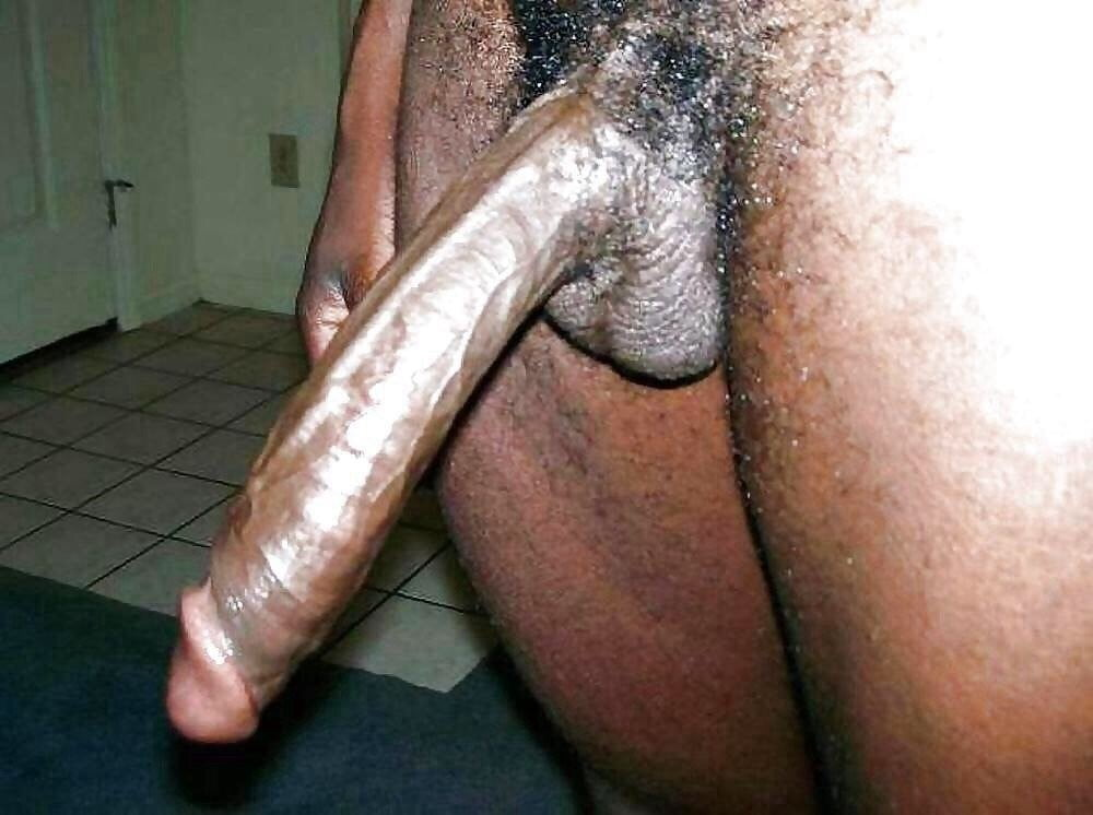 Free Dick Largest World Biggest Penis