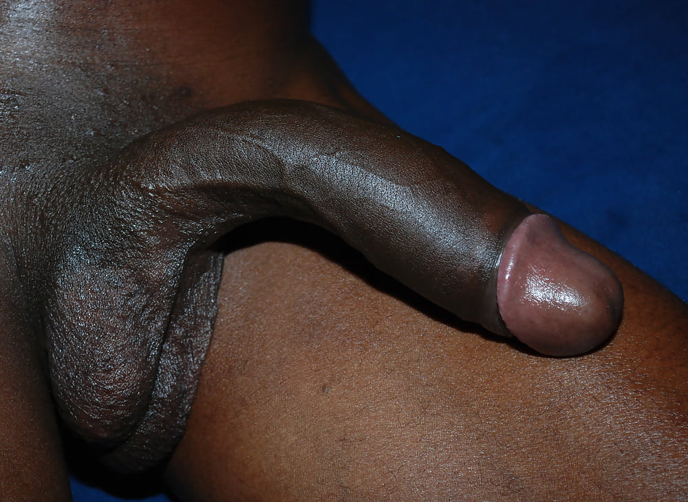 Great black cocks