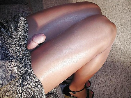 shemale pantyhose galleries Free