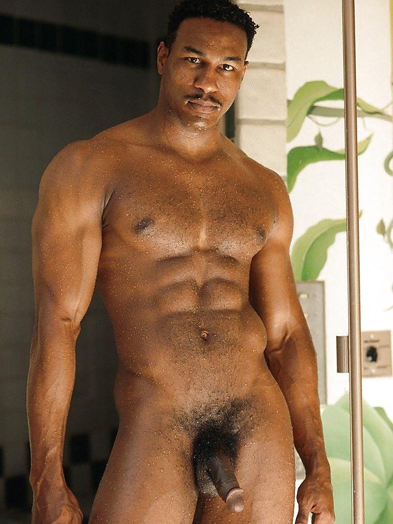 Bikini Gallery Hot Man Nude Gif