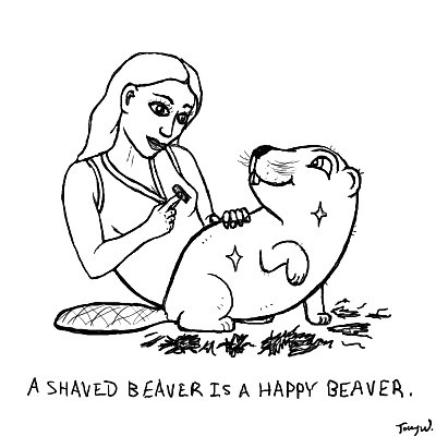 beavers shave Shaved