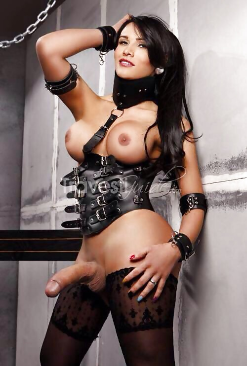 Dating Shemale Escorts In Nyc