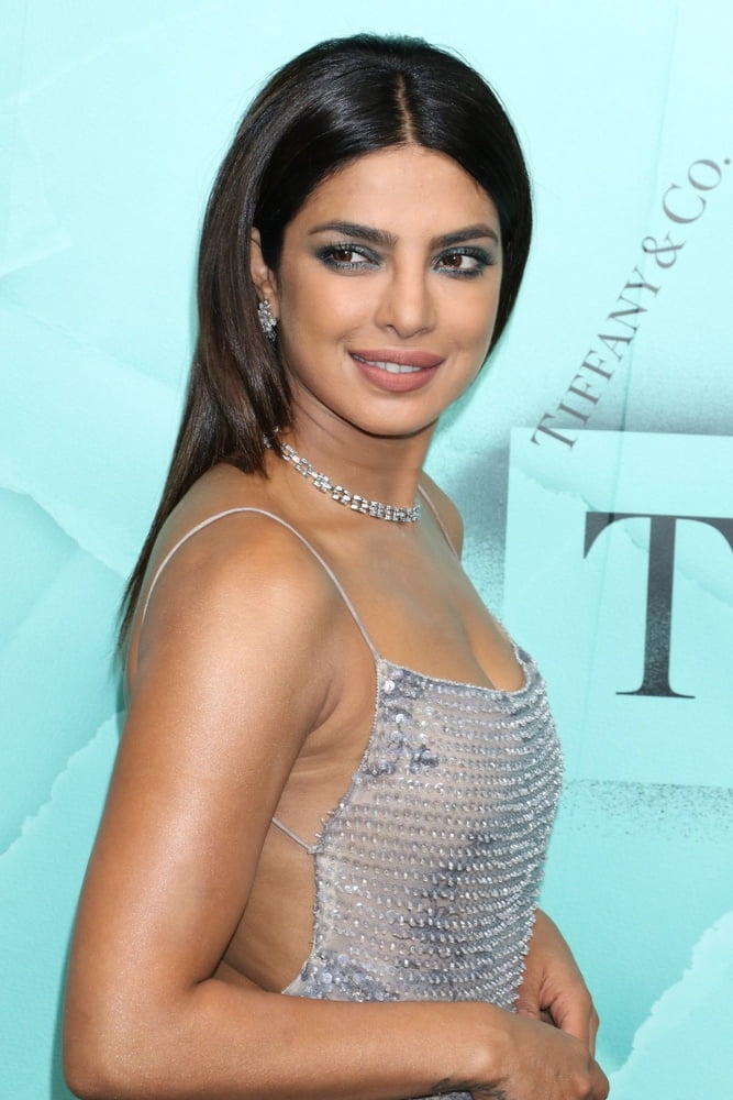 Priyanka chopra hot nude photos-1055