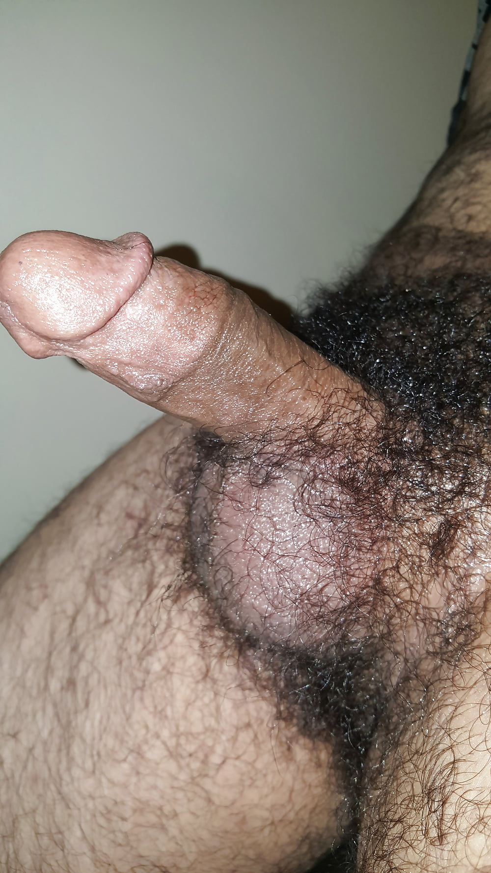 Big hairy dick pics