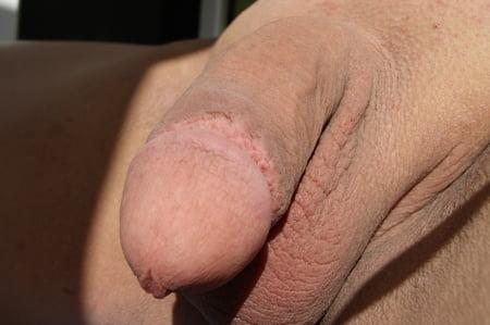 sexier Circumcised penis women