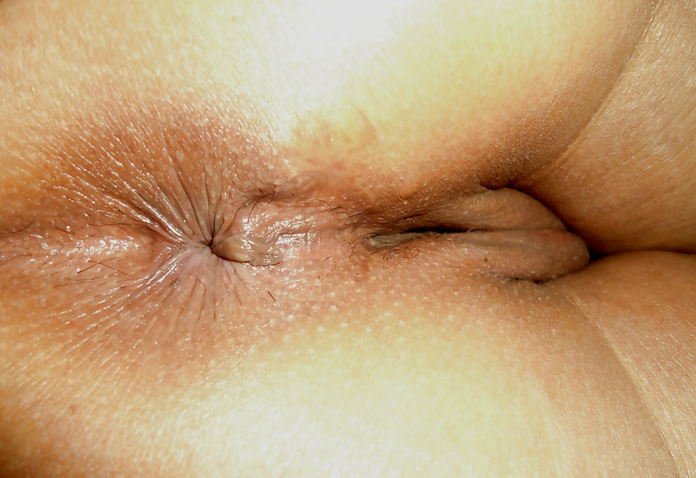 butthole-closeup-picture-galleries