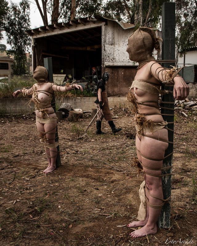 bondage-stories-scarecrow-grace-park-panty