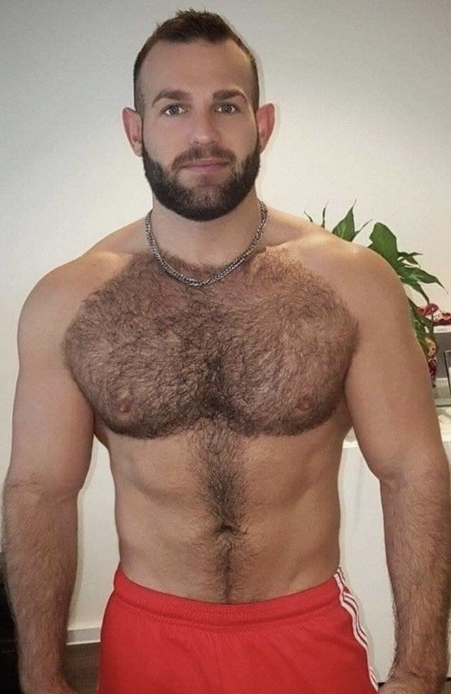 chest gay pics Hairy