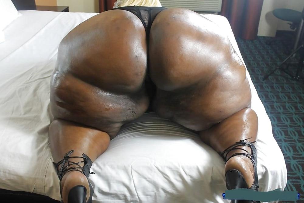 South african fat ass