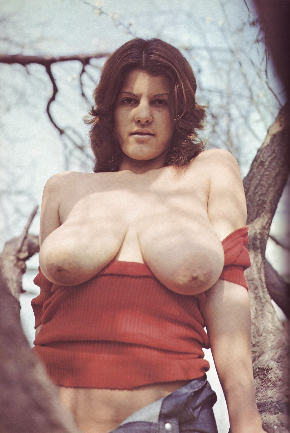 Vintage Tits, Porn Galery