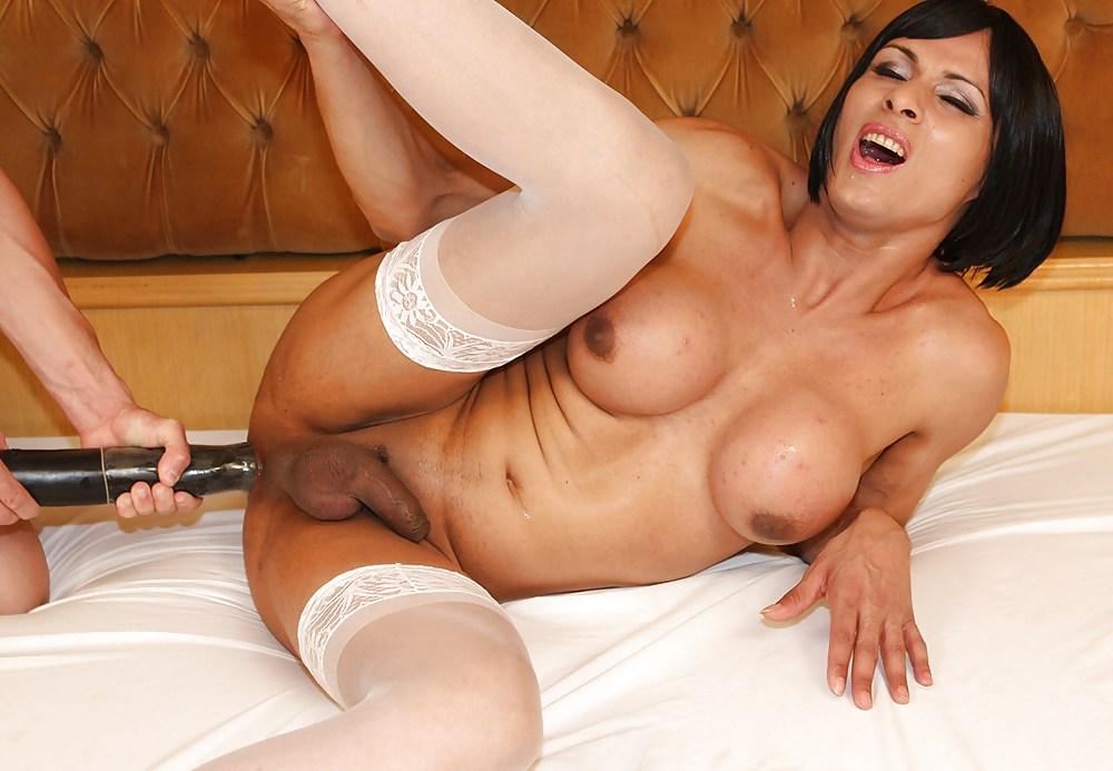 Transvestite Bareback