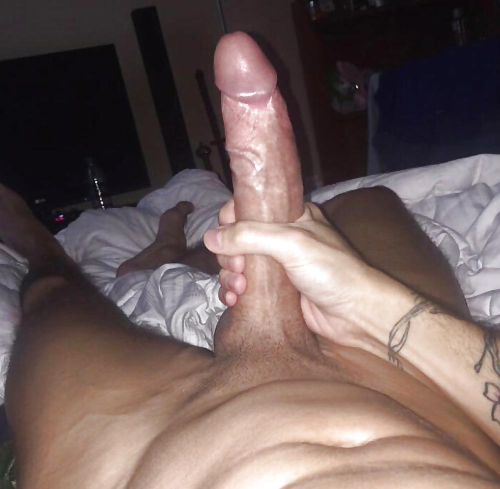 Moroccan cock